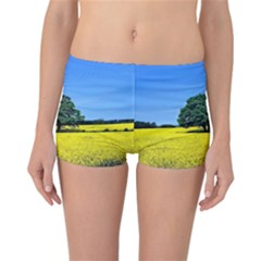 Tree In Field Reversible Boyleg Bikini Bottoms