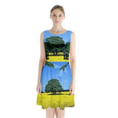 Tree In Field Sleeveless Waist Tie Chiffon Dress