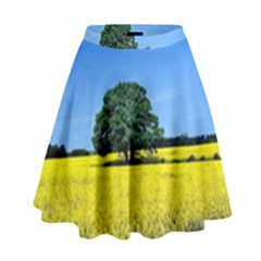 Tree In Field High Waist Skirt