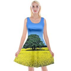 Tree In Field Reversible Velvet Sleeveless Dress