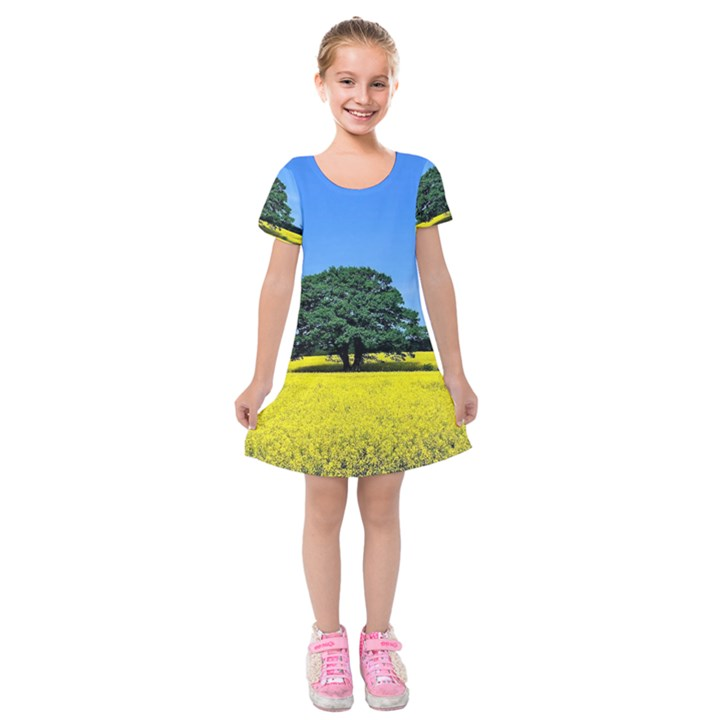 Tree In Field Kids  Short Sleeve Velvet Dress