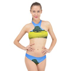 Tree In Field High Neck Bikini Set