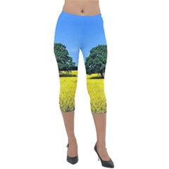 Tree In Field Lightweight Velour Capri Leggings