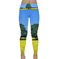 Tree In Field Lightweight Velour Classic Yoga Leggings