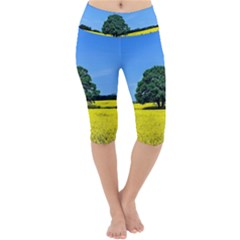 Tree In Field Lightweight Velour Cropped Yoga Leggings