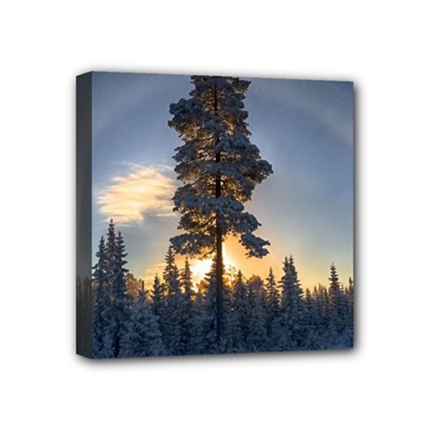 Winter Sunset Pine Tree Mini Canvas 4  X 4  (stretched)