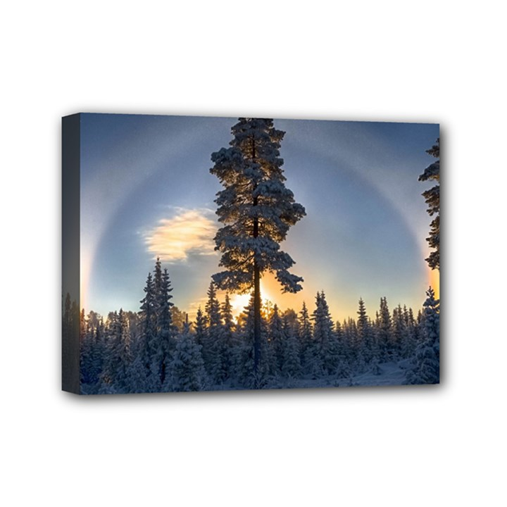 Winter Sunset Pine Tree Mini Canvas 7  x 5  (Stretched)