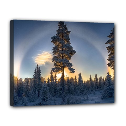 Winter Sunset Pine Tree Canvas 14  X 11  (stretched) by Alisyart