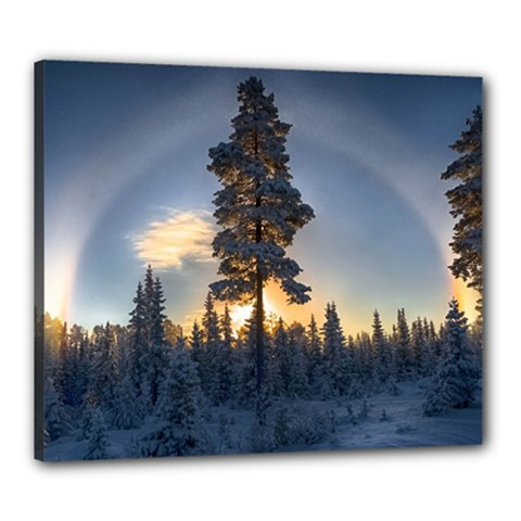 Winter Sunset Pine Tree Canvas 24  X 20  (stretched) by Alisyart