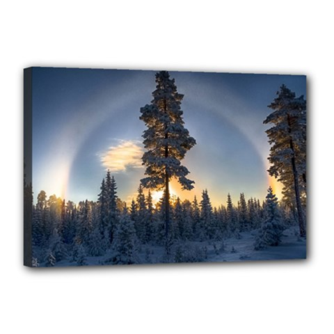 Winter Sunset Pine Tree Canvas 18  X 12  (stretched)