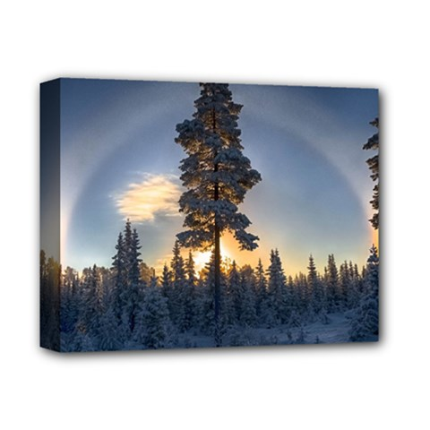 Winter Sunset Pine Tree Deluxe Canvas 14  X 11  (stretched)