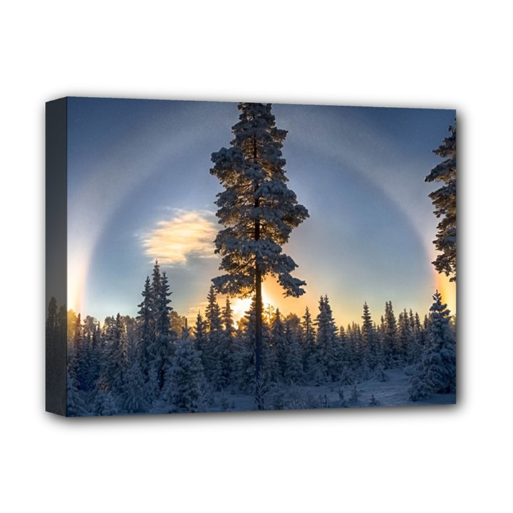 Winter Sunset Pine Tree Deluxe Canvas 16  x 12  (Stretched)