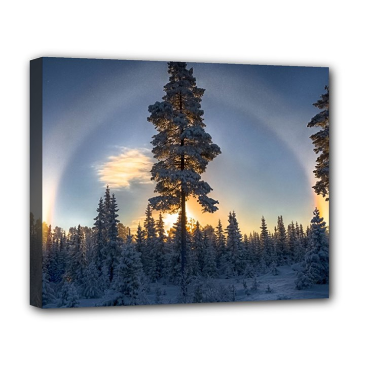 Winter Sunset Pine Tree Deluxe Canvas 20  x 16  (Stretched)