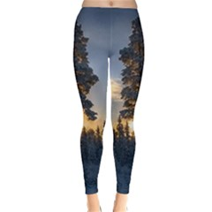 Winter Sunset Pine Tree Classic Winter Leggings