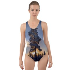 Winter Sunset Pine Tree Cut Out Back One Piece Swimsuit