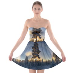 Winter Sunset Pine Tree Strapless Bra Top Dress