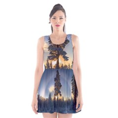 Winter Sunset Pine Tree Scoop Neck Skater Dress
