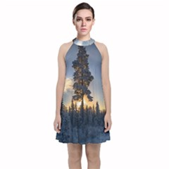 Winter Sunset Pine Tree Velvet Halter Neckline Dress