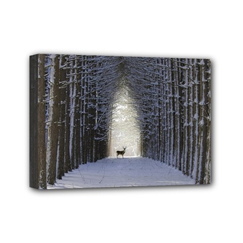 Trees Nature Snow Deer Landscape Winter Mini Canvas 7  X 5  (stretched) by Alisyart