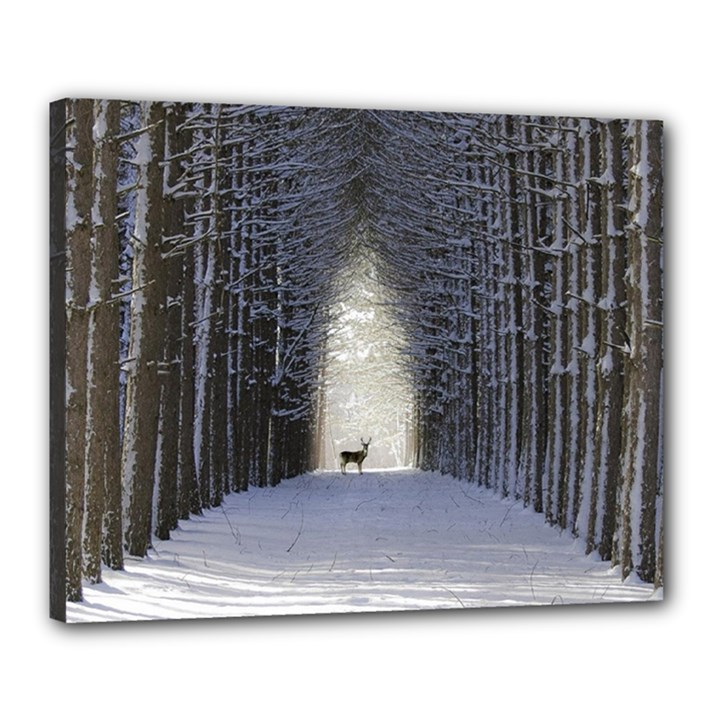 Trees Nature Snow Deer Landscape Winter Canvas 20  x 16  (Stretched)