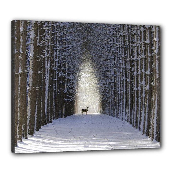 Trees Nature Snow Deer Landscape Winter Canvas 24  x 20  (Stretched)