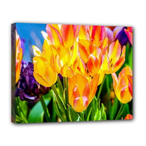 Festival Of Tulip Flowers Canvas 14  X 11  (stretched) by FunnyCow