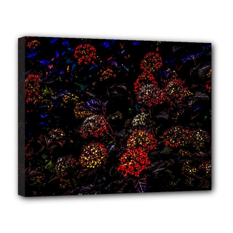 Floral Fireworks Canvas 14  X 11  (stretched) by FunnyCow