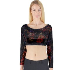 Floral Fireworks Long Sleeve Crop Top by FunnyCow