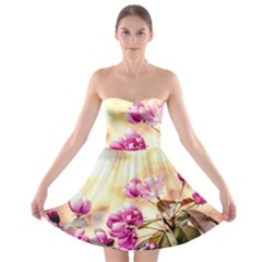 Paradise Apple Blossoms Strapless Bra Top Dress