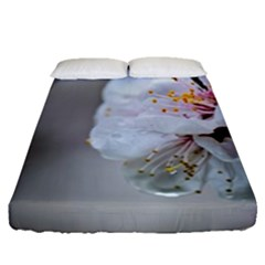 Rainy Day Of Hanami Season Fitted Sheet (queen Size) by FunnyCow