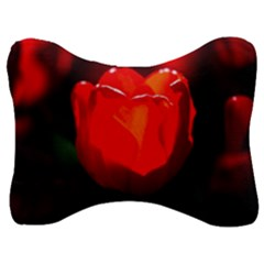 Red Tulip A Bowl Of Fire Velour Seat Head Rest Cushion by FunnyCow