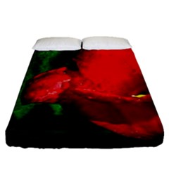 Red Tulip After The Shower Fitted Sheet (queen Size)