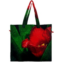 Red Tulip After The Shower Canvas Travel Bag by FunnyCow