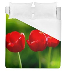 Three Red Tulips, Green Background Duvet Cover (queen Size) by FunnyCow