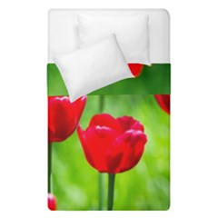 Red Tulip Flowers, Sunny Day Duvet Cover Double Side (single Size) by FunnyCow