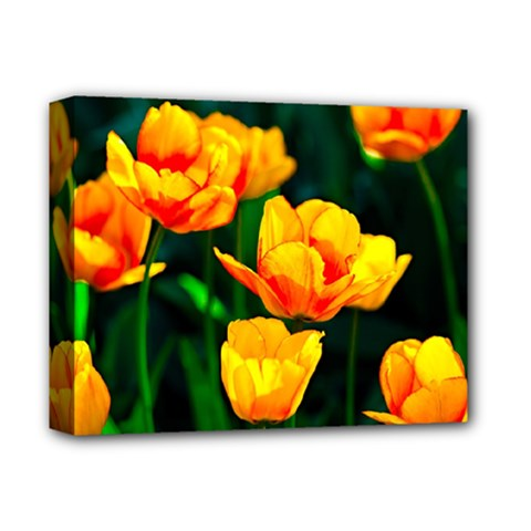 Yellow Orange Tulip Flowers Deluxe Canvas 14  X 11  (stretched) by FunnyCow