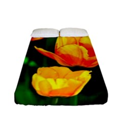 Yellow Orange Tulip Flowers Fitted Sheet (full/ Double Size)