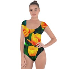 Yellow Orange Tulip Flowers Short Sleeve Leotard
