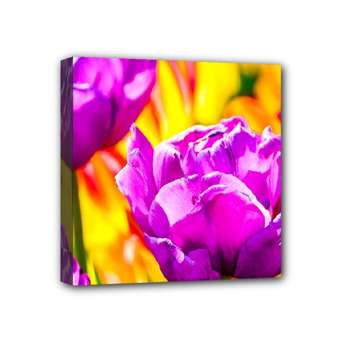 Violet Tulip Flowers Mini Canvas 4  X 4  (stretched) by FunnyCow
