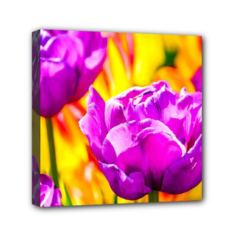 Violet Tulip Flowers Mini Canvas 6  X 6  (stretched) by FunnyCow