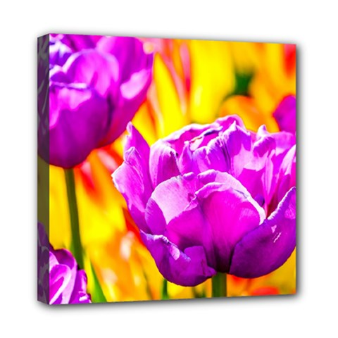 Violet Tulip Flowers Mini Canvas 8  X 8  (stretched) by FunnyCow