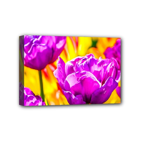 Violet Tulip Flowers Mini Canvas 6  X 4  (stretched) by FunnyCow