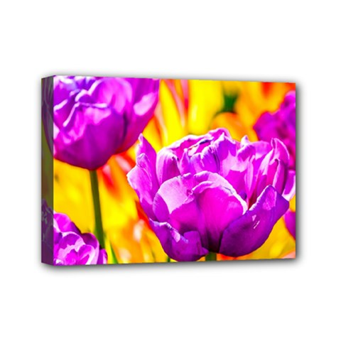 Violet Tulip Flowers Mini Canvas 7  X 5  (stretched) by FunnyCow