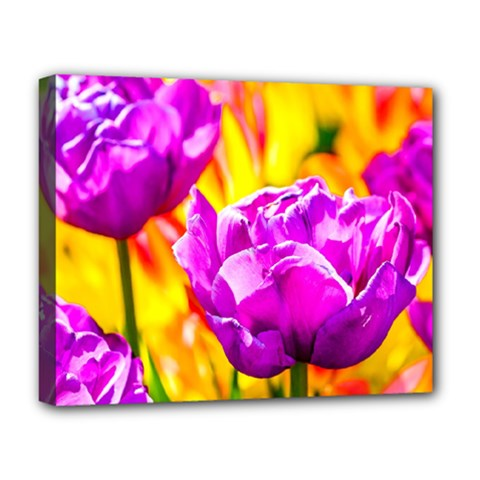 Violet Tulip Flowers Deluxe Canvas 20  X 16  (stretched) by FunnyCow