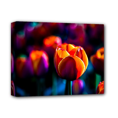 Red Tulips Deluxe Canvas 14  X 11  (stretched) by FunnyCow