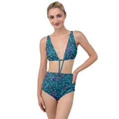 Peacocks Tied Up Two Piece Swimsuit