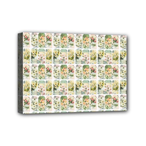 Victorian Flower Labels Mini Canvas 7  X 5  (stretched)