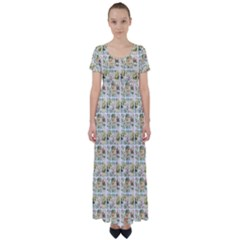 Victorian Flower Labels High Waist Short Sleeve Maxi Dress