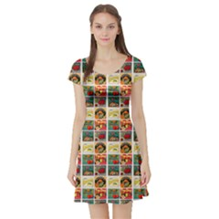 Victorian Fruit Labels Short Sleeve Skater Dress