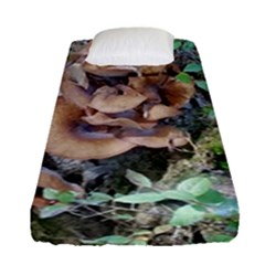 Abstract Of Mushroom Fitted Sheet (single Size) by canvasngiftshop